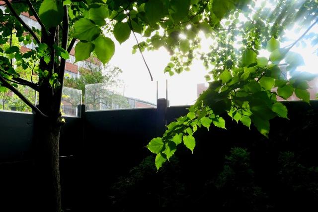 Never apart terrasse